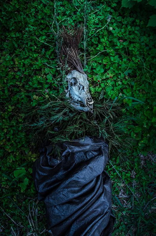 """Fenced Dragon"" (Italian Vogue) photograph"