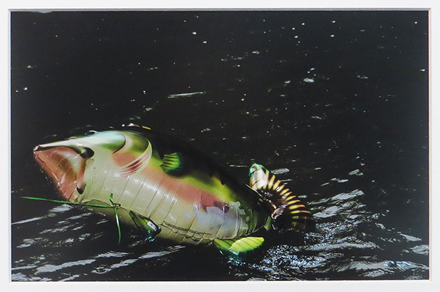 """Catch of the Day"" (Inflatables) Epson ultra smooth fine art paper, matte,"