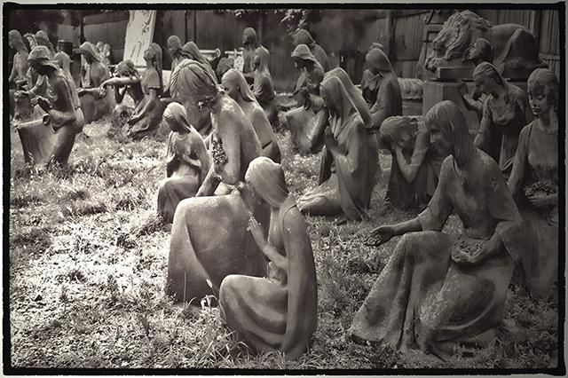 "Ruth Parker ""Field of Devotion"" photograph"