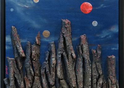 "Jack Quinn ""Alien Landscape"" ash bark and acrylic on birch, $750.00"