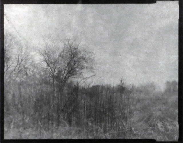 """Farm Field, Somerset, NJ"", gelatin silver contact print from paper negative by Patricia A. Bender"
