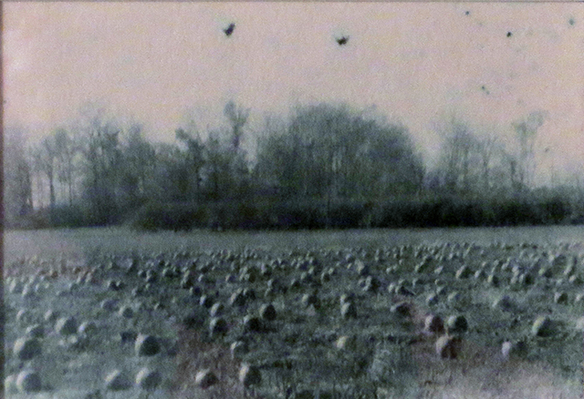 """Michigan Farm Field"", unique oxidized gelatin silver print by Patricia A. Bender"