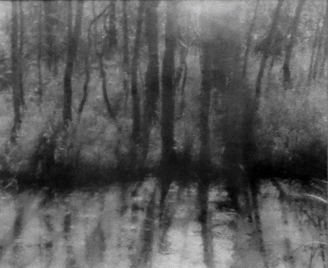 """Maple River, Michigan"", oxidized gelatin silver print by Patricia A. Bender"