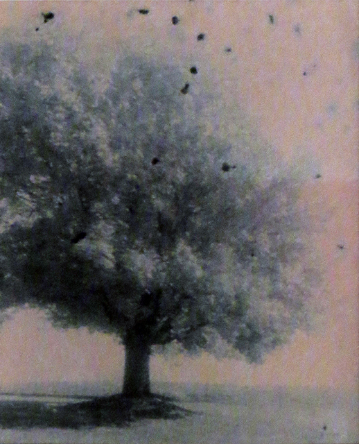 """Michigan Farm Tree"", unique oxidized gelatin silver print by Patricia A. Bender"