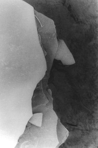 """Four Mile Creek (2)"", oxidized gelatin silver print by Patricia A. Bender"