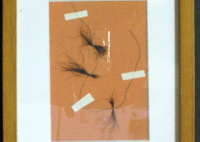 "Peter Arakawa  – ""Self Portrait"" pubic hair, fishing line on canvas board"
