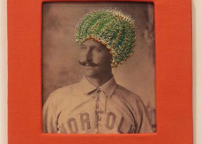 "Nikki Virbitsky's ""Barrel Cactus""  – Embroidery on photo transfer"