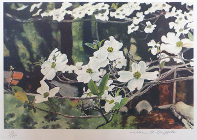"""Dogwood""  – Photo offset lithograph – 