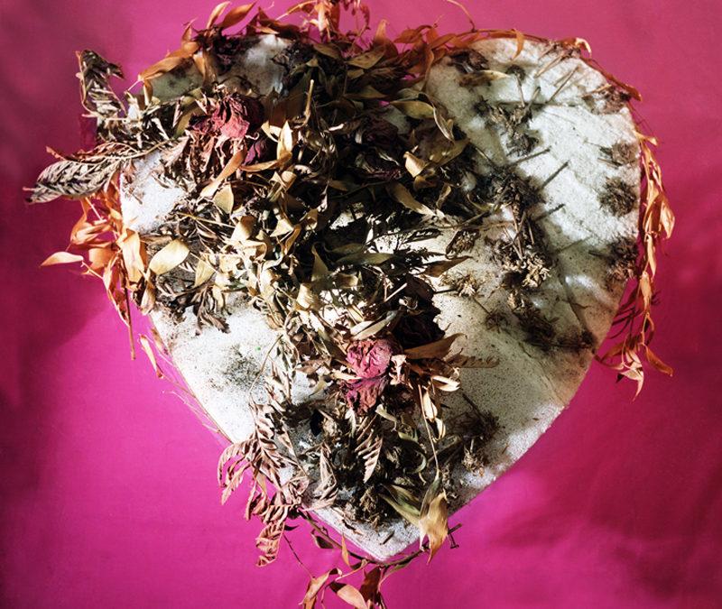"""""""Pink Heart"""" by Alissa Eberle"""