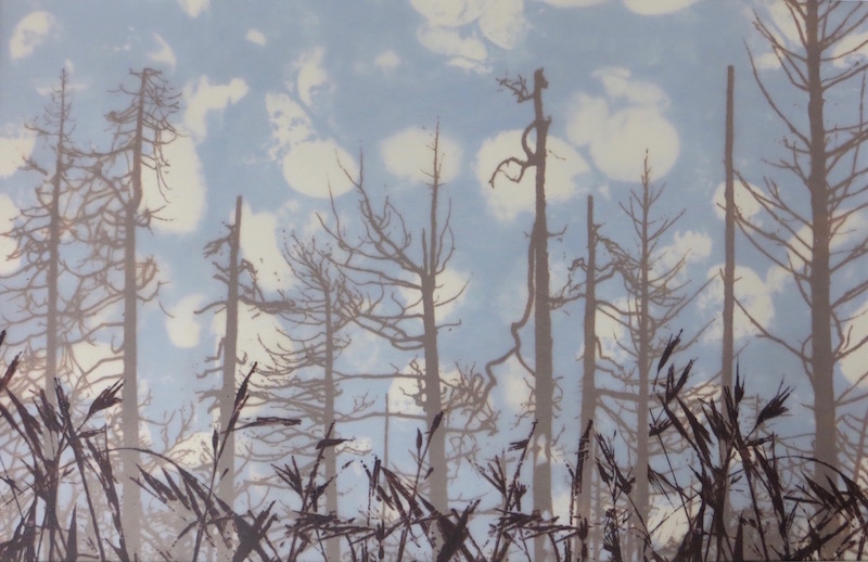"Jean Burdick ""Crested Wheatgrass"" silk screen on vellum,"