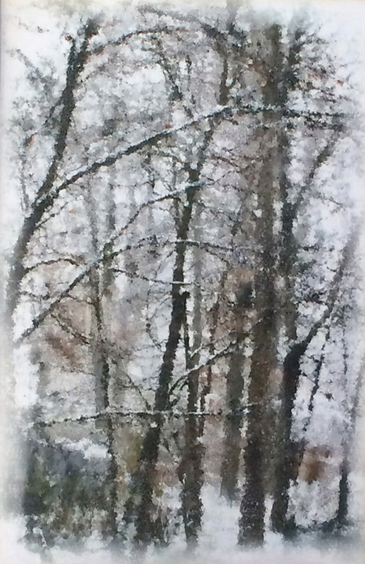 "Heidi Sussman  – ""Winter Trees 3"""