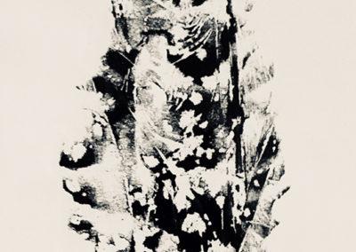 "John Marron  – ""Pine Cone"""