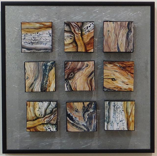 """Laura Spector  – """"Living Textures"""""""