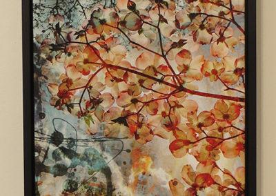 """Parvathi Kumar  – """"Dogwood Dream"""""""