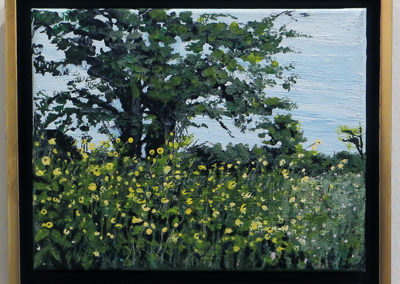 "Virginia Carroll   ""Wild Flowers at Duke"""
