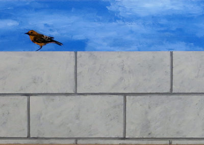 """Wall With Darwin's Finch"" acrylic on canvas, 24"" H x 42"" W, $800.00"