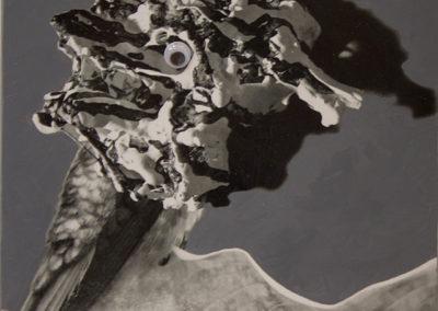 "Janice Gossman ""Bird Cone"" mixed media, photo, acrylic, googley-eye on canvas"