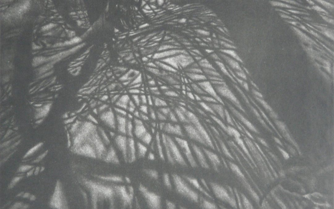 "Robin Gibson ""Veiled Presence"" mezzotint"