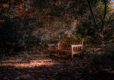 """Wish you were here"" by Sam Koren"