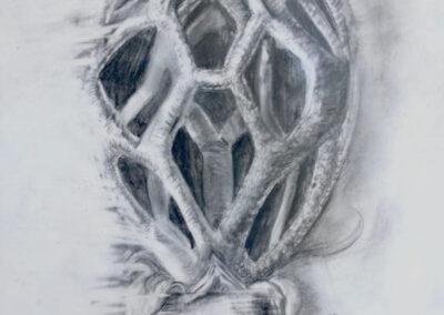 "Dorothea Osborn ""Encompass"", graphite on mylar, framed size 18""H  x 15""W, 2015 $250.00"