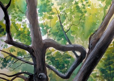 "Brian McCormack  ""Tree before the Storm""  watercolor"