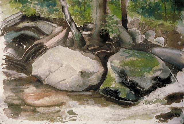 Rocky stream in Acidalia section of Long Eddy, NY