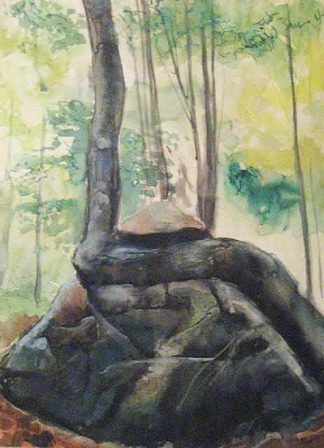 Tree through rock in Harriman State Park