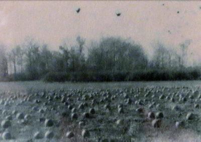 """Michigan Farm Field"", unique oxidized gelatin silver print by Patricia A. Bender"