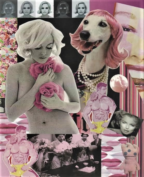 "Luis Alves: Collage  – ""Attention ""Poverty"" (Pink)"" hand made collage"