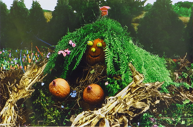 """Vince DiOrio –  """"The Gourd Family Series – The Story of Life"""" black and white prints colored in photoshop"""