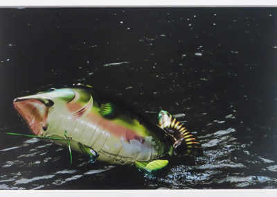 "Christine Anderson – ""Catch of the Day"" (Inflatables) Epson ultra smooth fine art paper, matte"