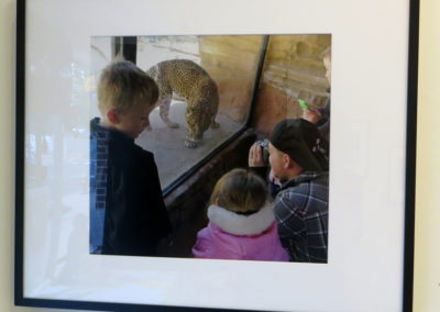 "Melissa Tomich –  ""Leopard, New Jersey"", 2013"