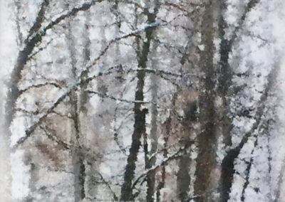 "Heidi Sussman  – ""Winter Trees 3"""