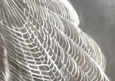 "Dorothea Osborn  ""Sublime Capture"", graphite on mylar, framed size  18"" H  x 15"" W, 2014, $275.00"