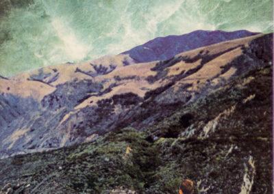 "Eric Toscano ""Untitled (Go Green III)"" collage $150.00"